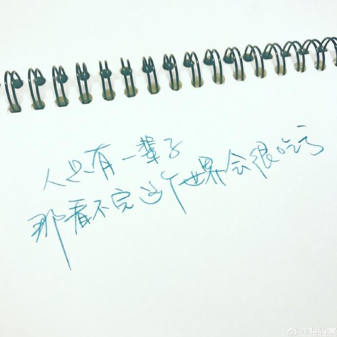 张皓宸给你写下了整个冬天